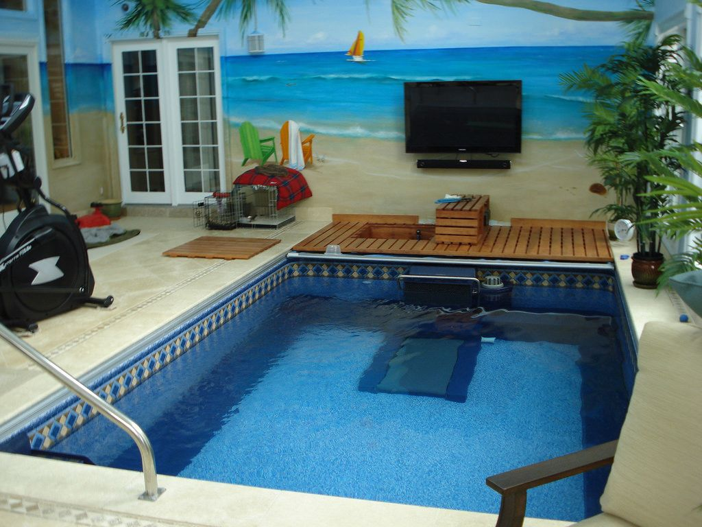 This Indoor Endless Pool Allows For In Place Swimming Aquatic Exercise And Family Fun The Beach Themed Mural Brings A Endless Pool Pool Houses Luxury Pools