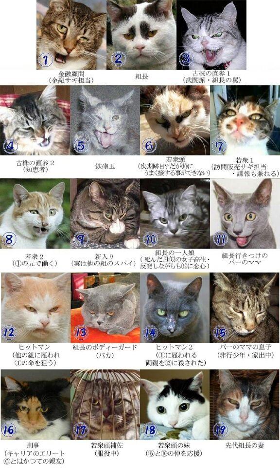 『猫ヤクザ相関図』ってオモシロイのがあったから挙げてみた❗(笑) | Cyber Contact Next Evolution.