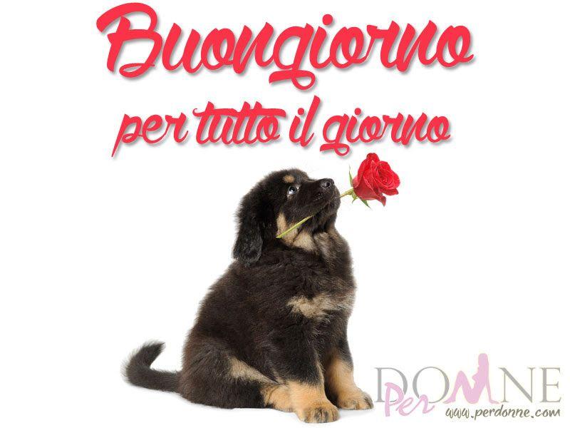 Immagini buongiorno erika good morning told you so e for Immagini divertenti buon giorno