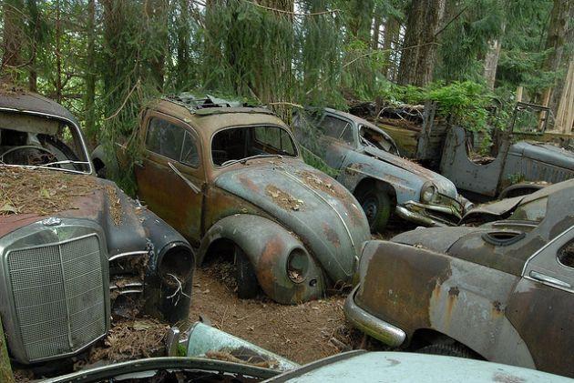 abandoned cars switzerlands kaufdorf vehicle graveyard