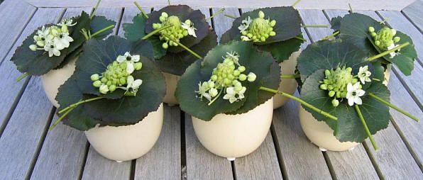 Tafelstuk voor pasen in eiervaasjes bloemstukjes pinterest for Tafeldecoratie huwelijk
