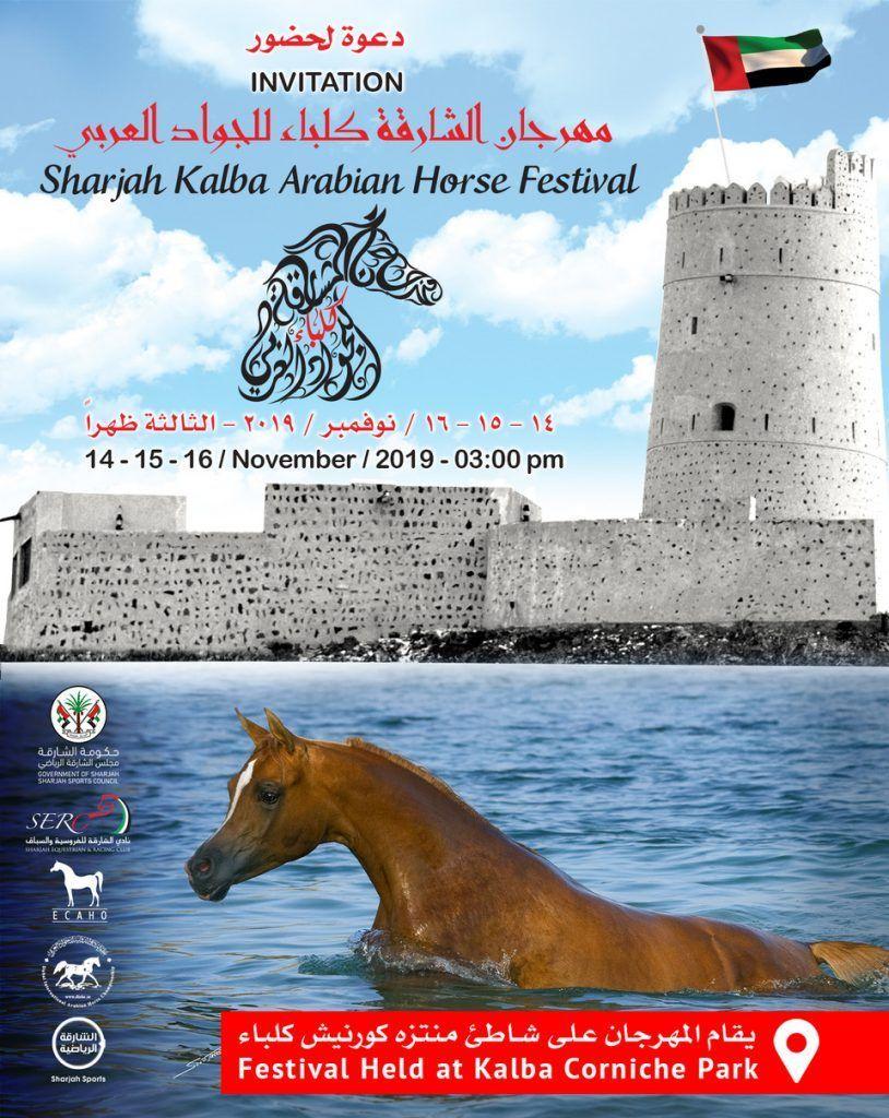 برعاية سمو الشيخ الدكتور سلطان بن محمد القاسمي تنطلق بطولة كلباء لجمال الخيل يوم الخميس المقبل Arabian Horse Horses Sharjah