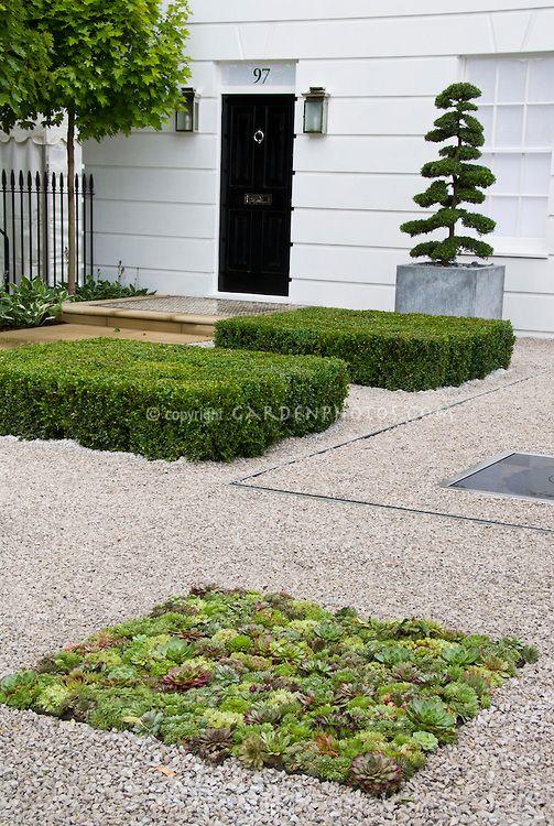 Sempervivum And Sedum Succulents In Gravel As Groundcover