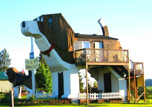 Risultati immagini per 14. Dog Bark INN, Cottonwood, Idaho, USA