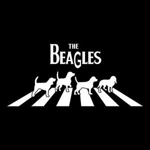 Another Abbey Road Parody Or The Beatles Now The Beagles