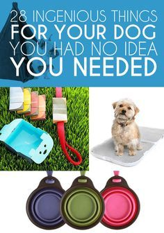 28 Ingenious Things For Your Dog You Had No Idea You Needed - BuzzFeed Mobile-Some seriously clever ideas here! I'm probably going to invest in a freezable she'll bowl fur my girls, especially Honor.