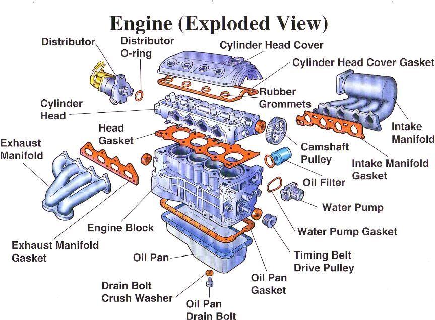 Car engine anatomical structure - www.anatomynote.com | Anatomy note ...