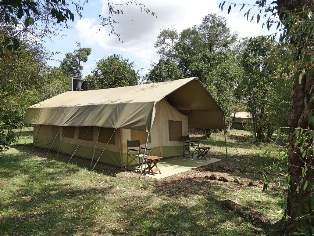 Hammerkop Migration camp masai mara