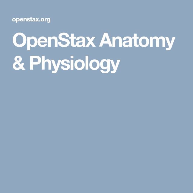 OpenStax Anatomy & Physiology | Education, Science, & Medicine ...
