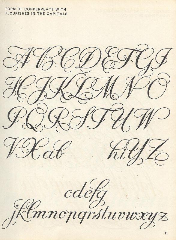Capital S Calligraphy : capital, calligraphy, Capital, Cursive