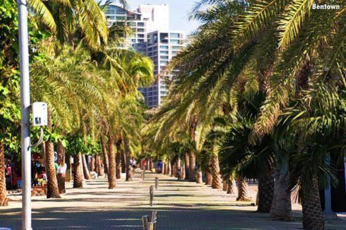 ชายหาดพัทยาพลิกโฉม สวยงามเหมือนฮาวาย กลายเป็นหาดสวรรค์ ด้านชาวเน็ตชื่นชมคนจัดระเบียบ มอบประโยชน์ให้แก่ประชาชนอย่างแท้จริง