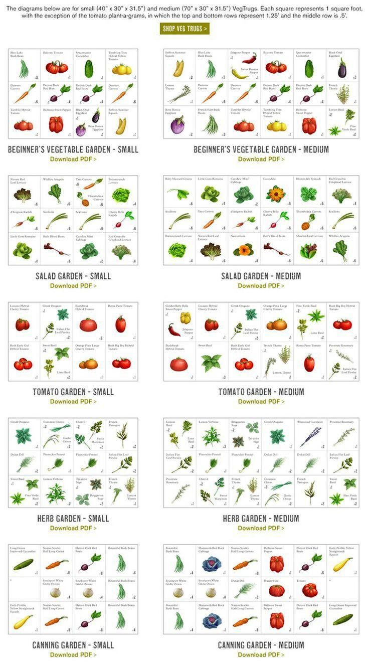starting to plan our garden | Gardens, Vegetable garden and Garden ideas