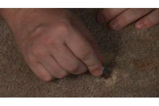 How To Fix A Bleach Stain On Carpet Ehow Bleach On Carpet Carpet Repair How To Clean Carpet