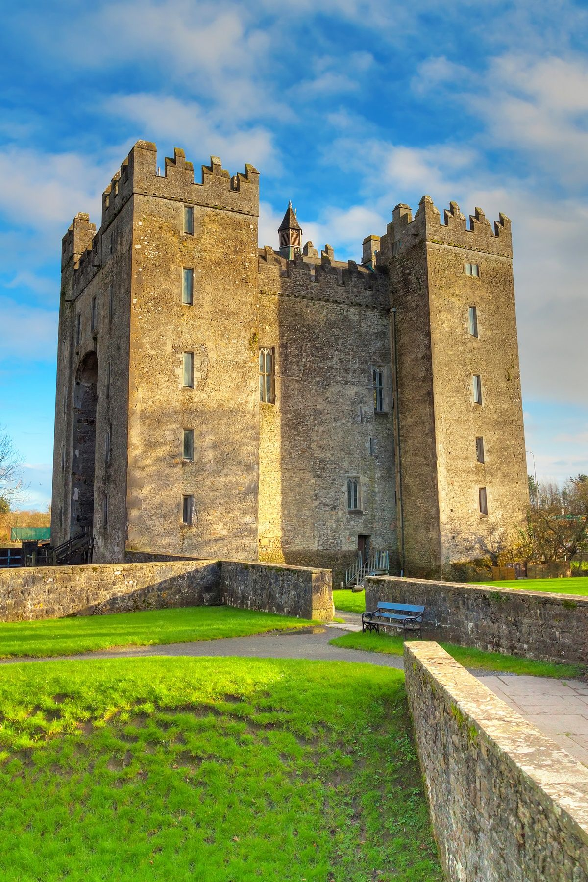 Bunratty Castle and Folk Village Tickets Village tours