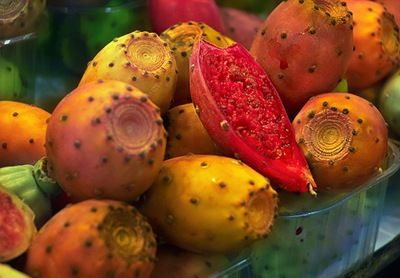 Opuntia ficus indica - Indian Fig - Tuna - Higo Chumbo by Carlos Lorenzo on Flickr [used under Creative Commons License]