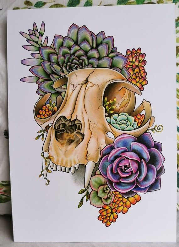 Photo of Succulent Cat Skull Art Print | Etsy