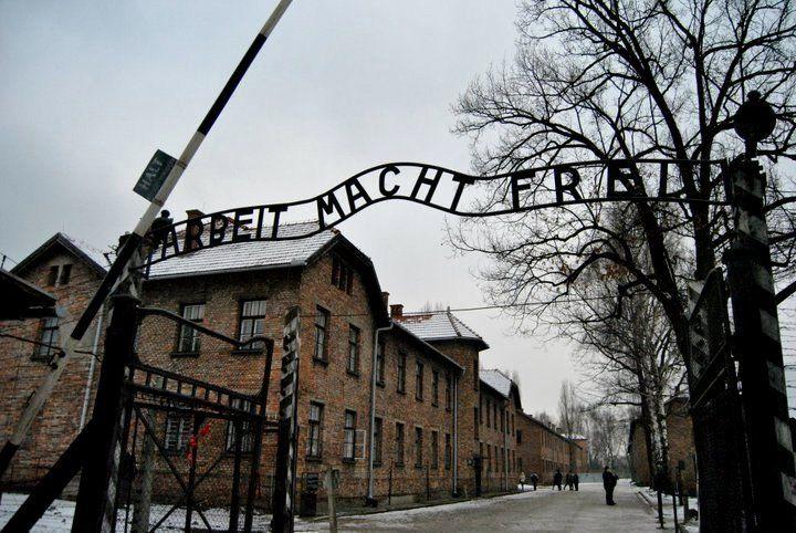 Theodor Wiesengrund Adorno parlando della Shoah disse:«Auschwitz inizia quando si guarda a un mattatoio e si pensa: sono soltanto animali».