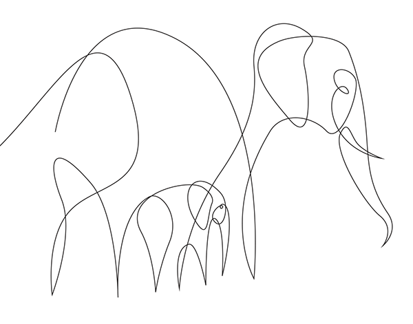 Minimalist Elephant Drawing: One Line - Creatures On Behance In 2019