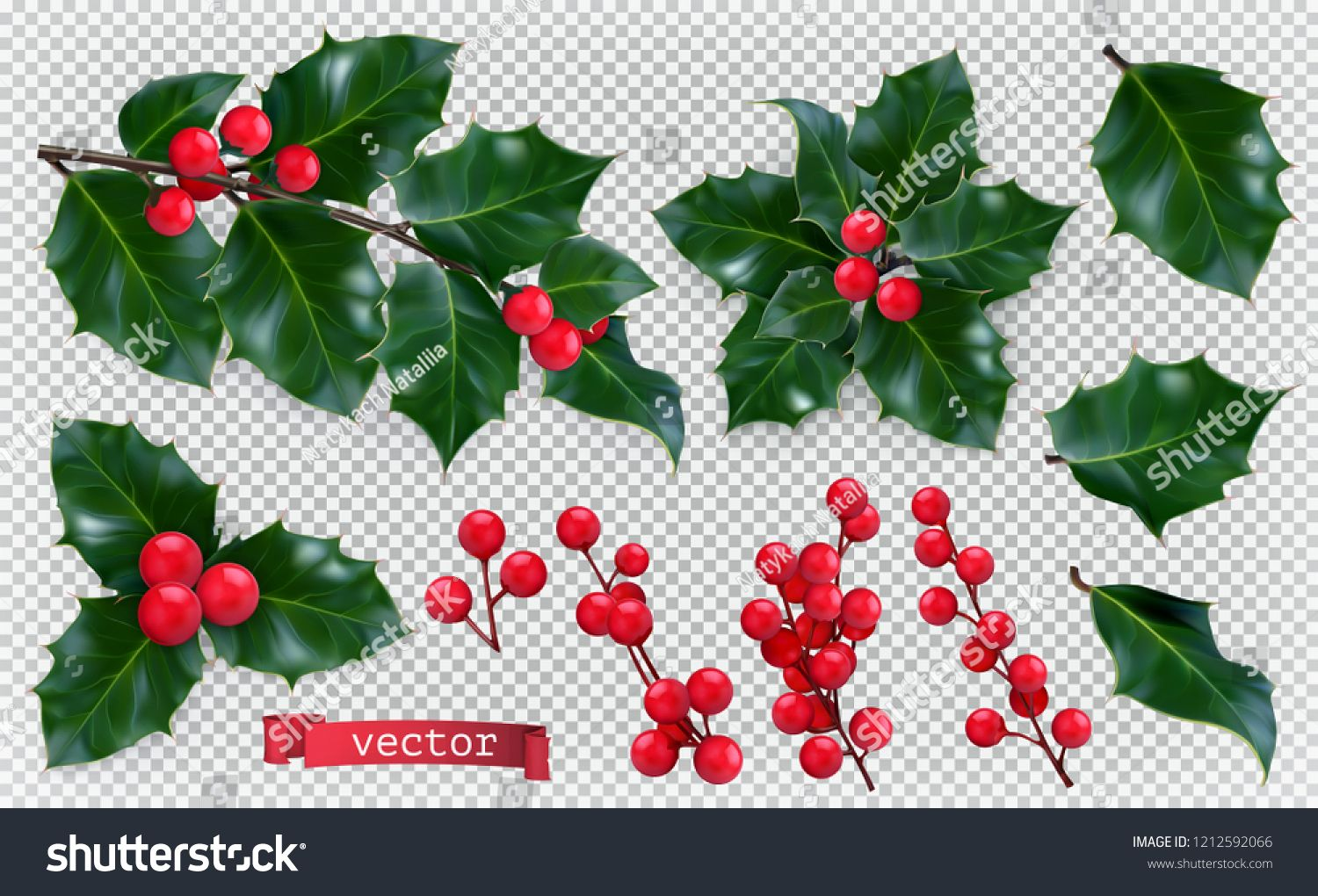 Christmas Decorations Holly Red Berries 3d Realistic Vector