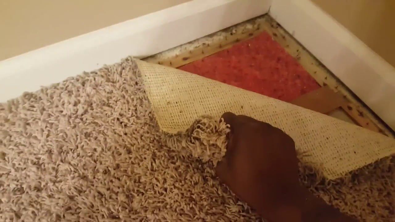 How To Pull Up Old Carpet Easy Diy Youtube In 2020 Easy Diy