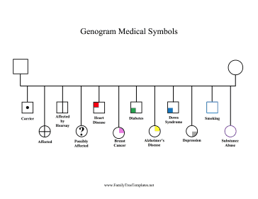 17 Best images about genograms on Pinterest   Ecological systems ...