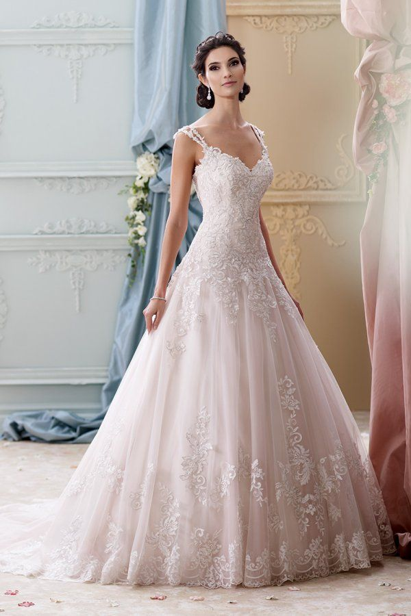 Wedding Gown Gallery   David tutera, Gowns and Wedding dress