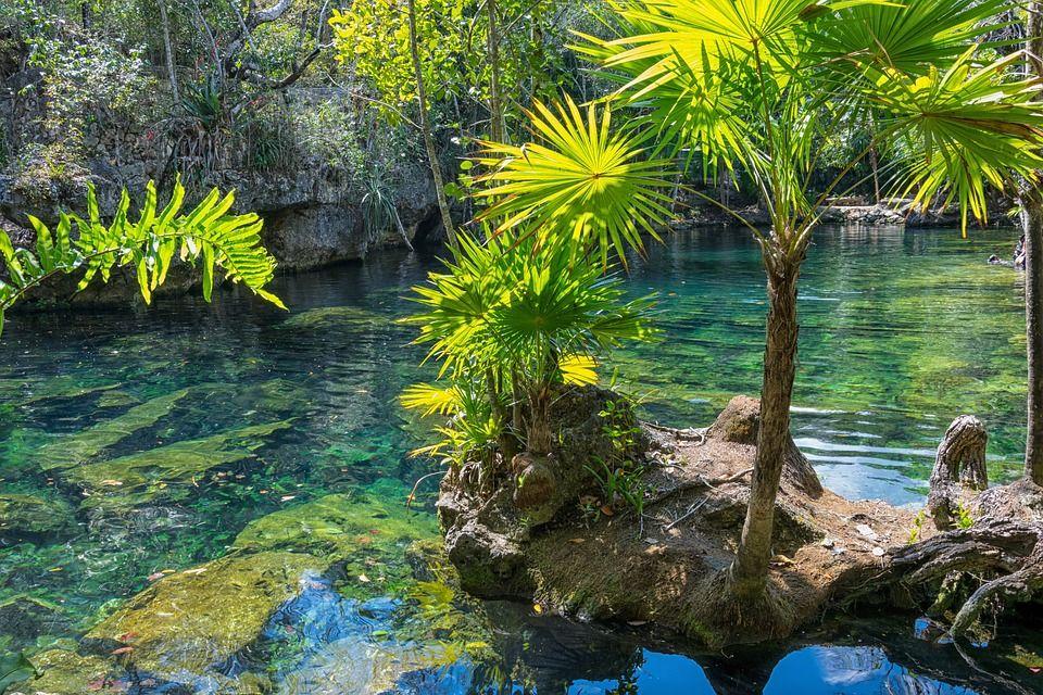 Image Gratuite Sur Pixabay Mexique Yucatan Cenote
