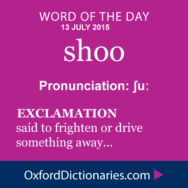 Shoo Definition Of Shoo In English From The Oxford Dictionary Good Vocabulary Words Word Of The Day Cool Words