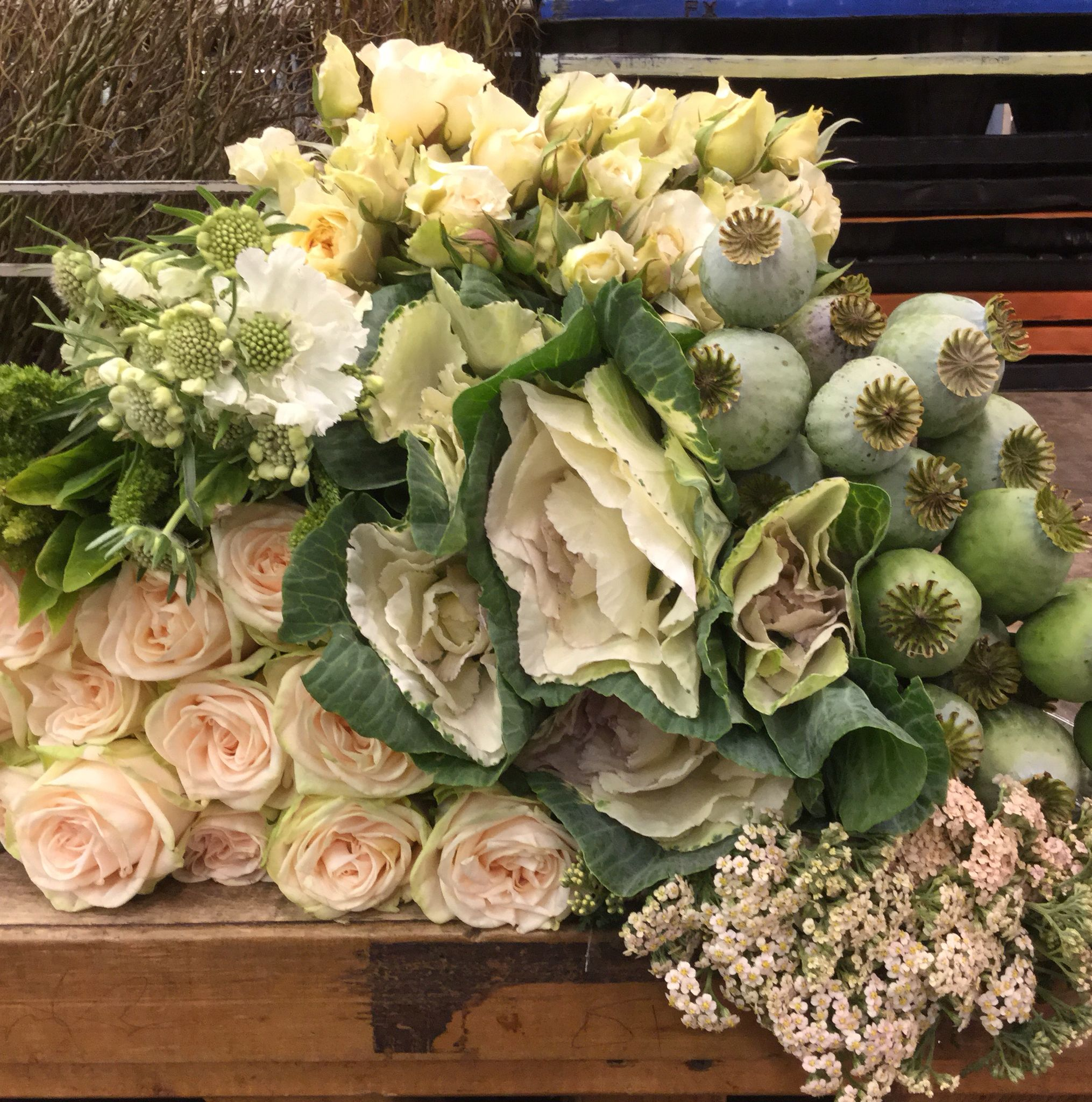 Gwendolyn Garden Roses Upright Green Amaranthus White Scabiosa