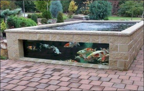 28 Concept Bassin A Poissons Pour La Beaute De Votre Maison