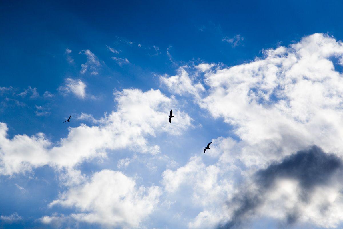 Moln och himmel