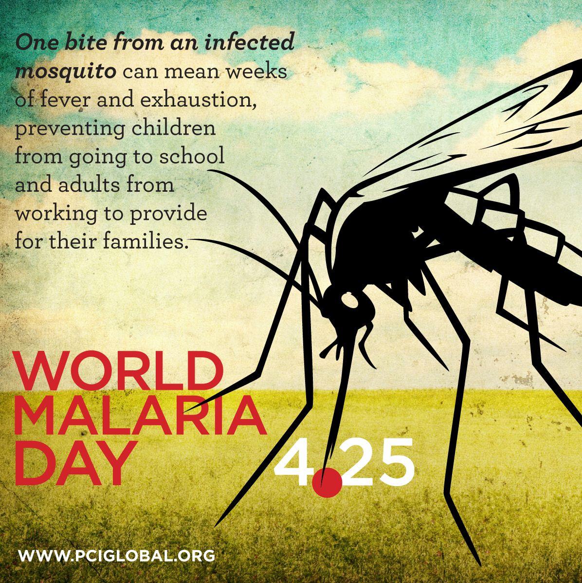 World Malaria Day is April 25th, 2013 malaria health