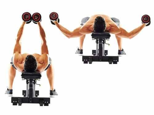 Flat Bench Fly Chest Fly Best Chest Workout Lower Chest