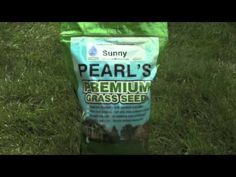 Lawn Seed Pearl S Premium Lawn Seed Pearl S Premium Grass Seed Seeding Lawn Lawn