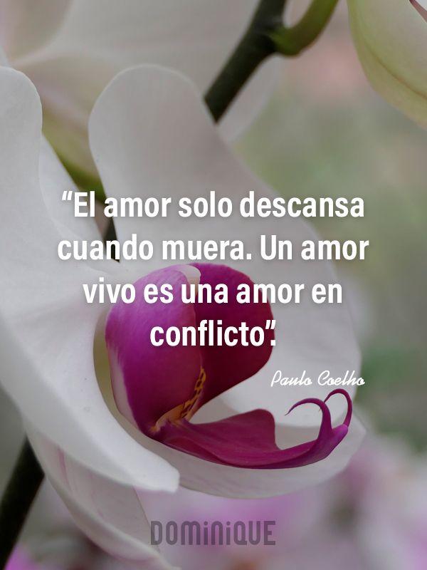 Orquídea con frase de Paulo Coelho sobre el amor.