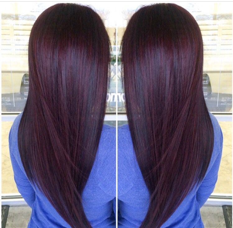 Dark Brown Hair With Purple Undertones - 407.5KB