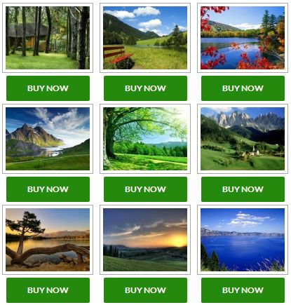 NextGEN Gallery Sell Photo plugin for WordPress