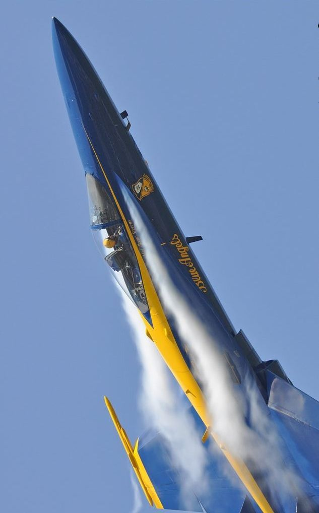 F-18C Hornet the Blue Angels