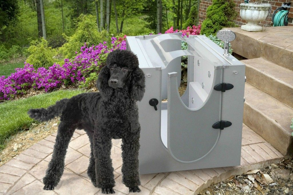 Dog Bath Tub with Hand Shower, Portable for Indoor Dog