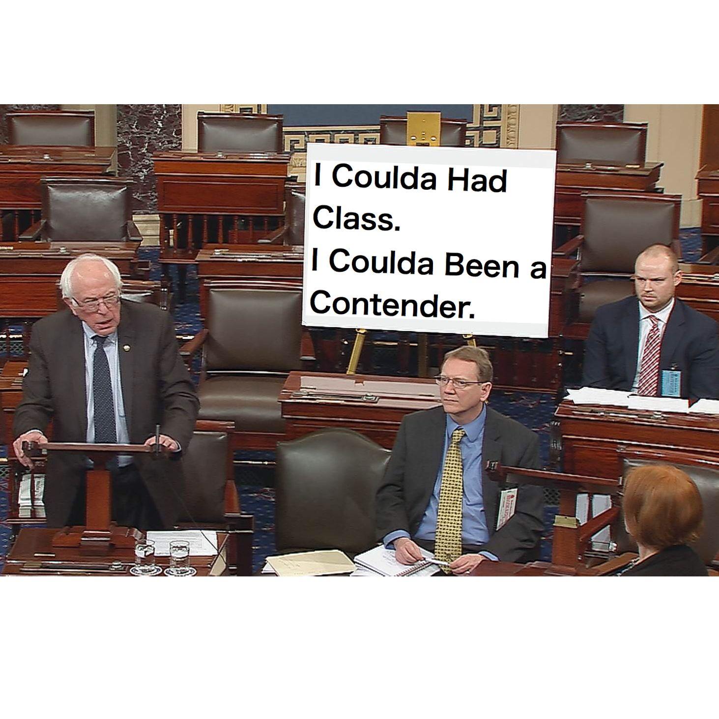 Meme Funny Humorous Bernie Sanders Congress Poster I Coulda Had