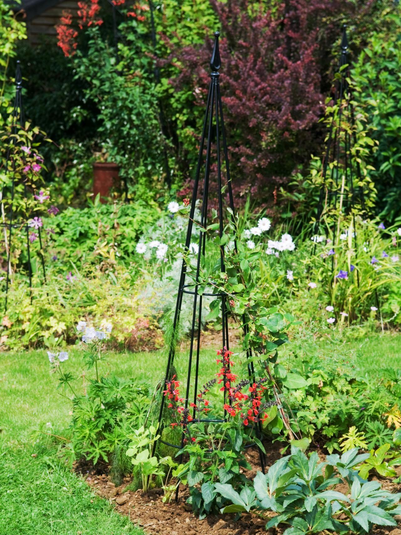Cheap Garden Trellis Ideas Part - 40: Build A Cheap Metal Garden Trellis - Http://www.1stgardenideas.com