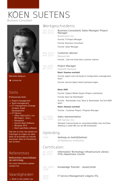 business consultant   sales manager   project manager resume example