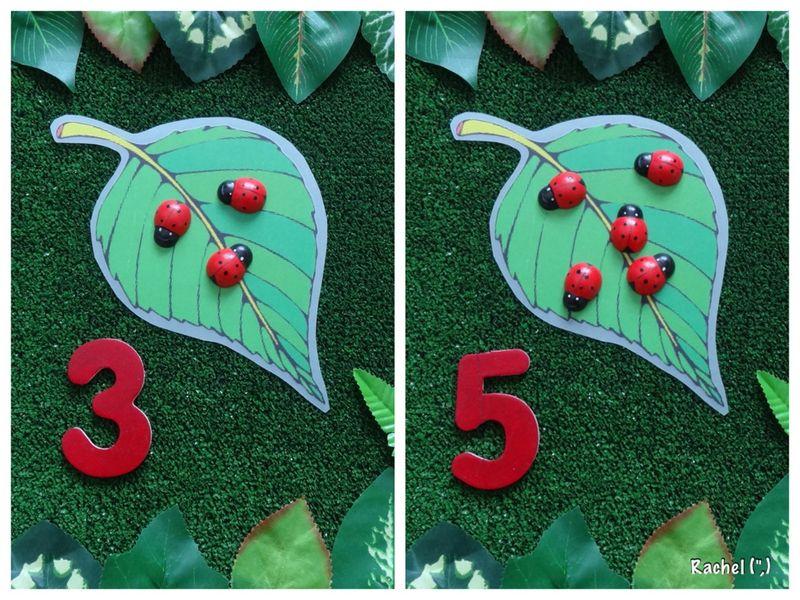 Garden Maths Ideas Math, Math activities, Preschool math