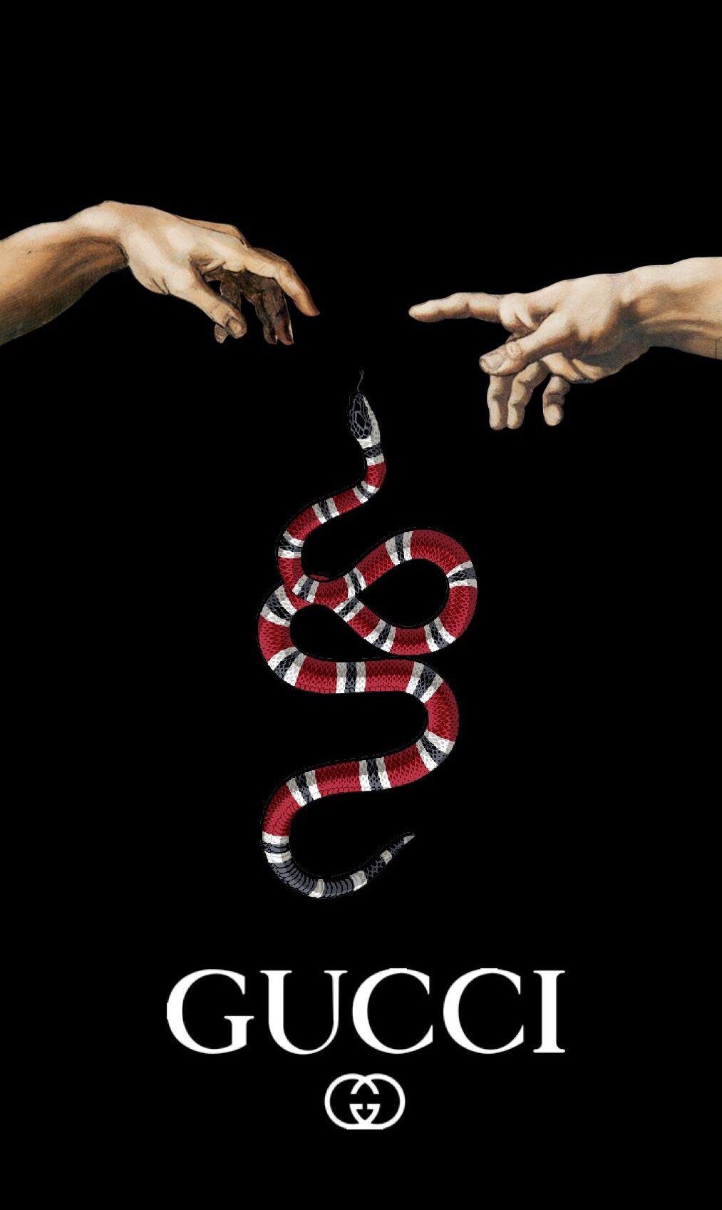 Gucci Snake Wallpaper Gucci Wallpaper Iphone Snake Wallpaper Hypebeast Wallpaper