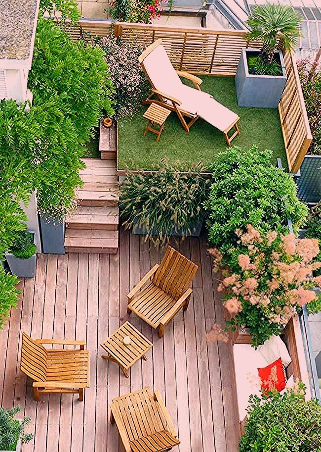 Photo of Gartengras
