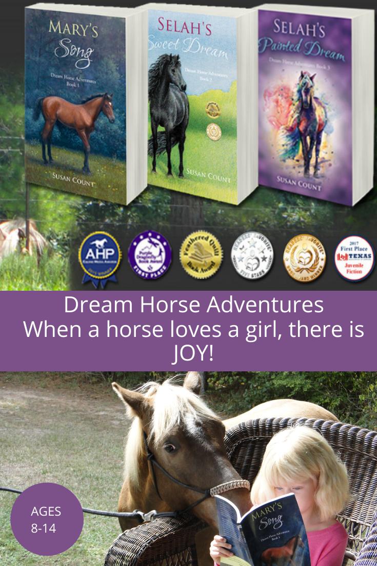 Dream Horse Adventures Horse Adventure Horse Books Beautiful Horse Pictures