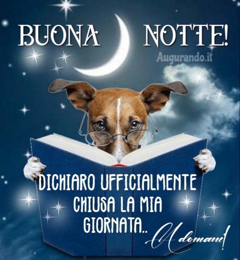 Le Migliori Immagini Della Buonanotte Per Augurare Una Dolce Notte Auguri Di Buona Notte Buona Notte Divertente Buonanotte