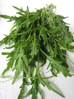 I LOVE wild arugula...can eat it everyday! ~dt