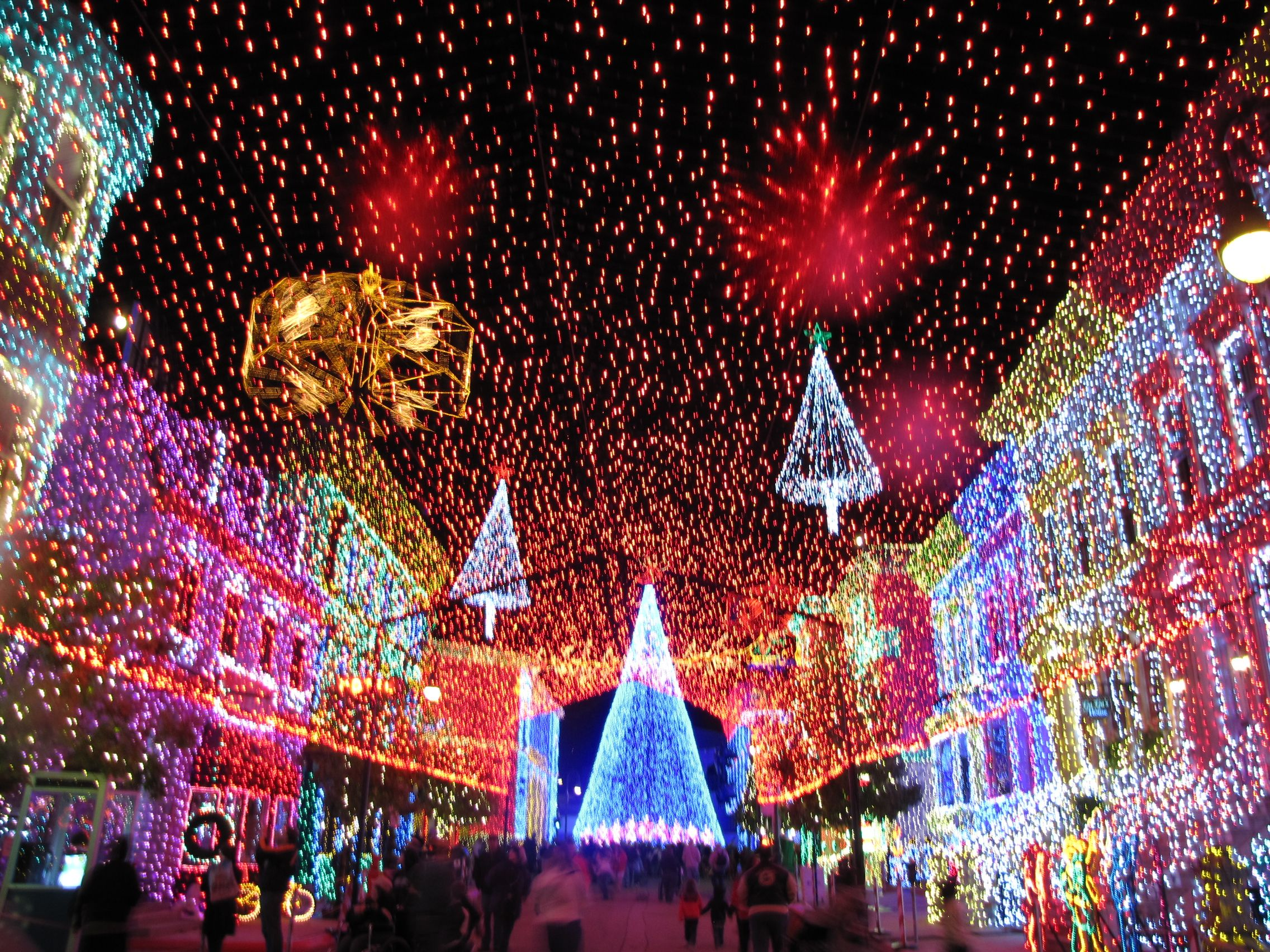 OSBORNE FAMILY SPECTACLE OF DANCING LIGHTS AT HOLLYWOOD STUDIOS ...