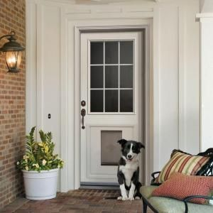 JELD WEN 9 Lite Primed White Steel Entry Door With Large Pet Door And  Brickmold